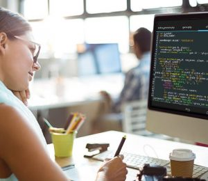 What Skills Will You Gain? Program Overview U of M Coding Boot Camp